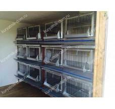 Зимний курятник для бройлеров и несушек на 100 кур «Кижи 4-3»